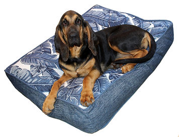 Large Dog Bed Tropics Indigo White.jpg