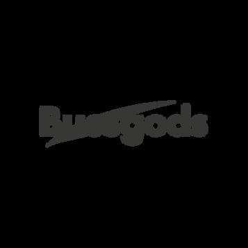 Bussgods_Logo.png