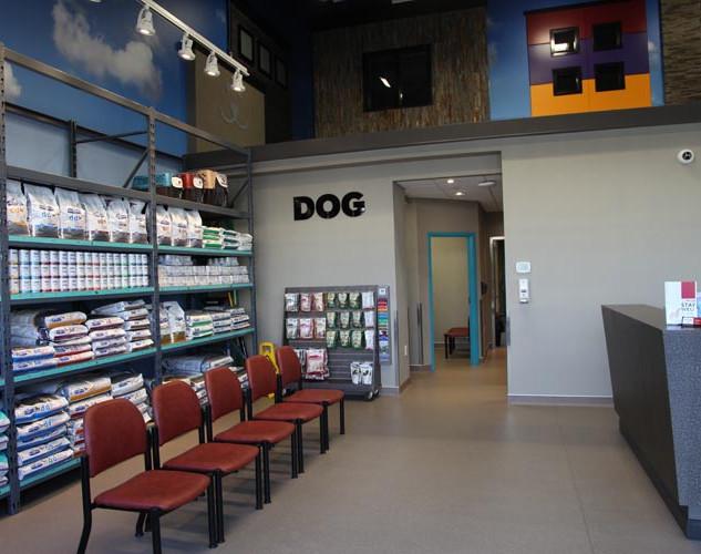 Dog Reception