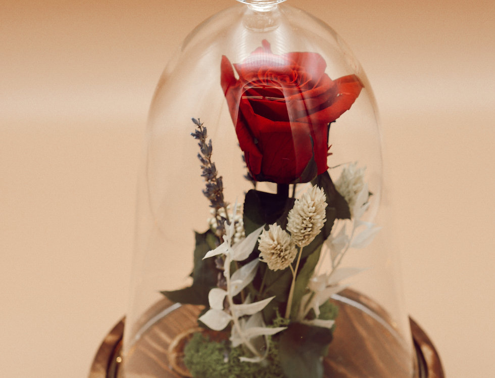 Cúpula con rosa preservada con luz