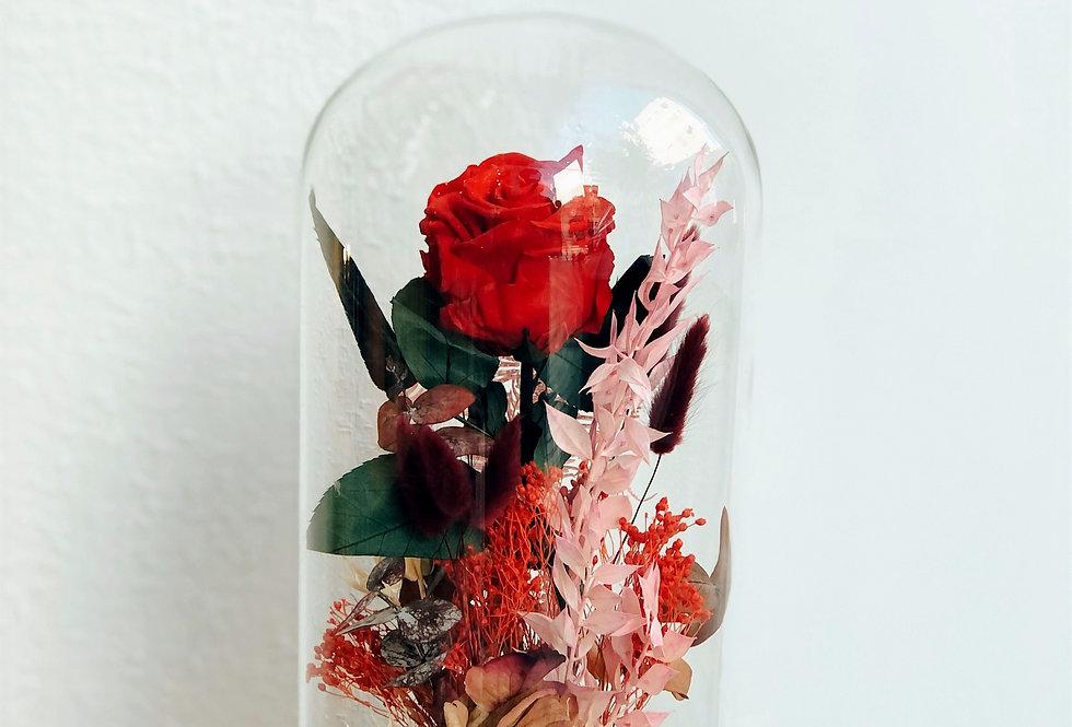 Cúpula con rosa roja preservada