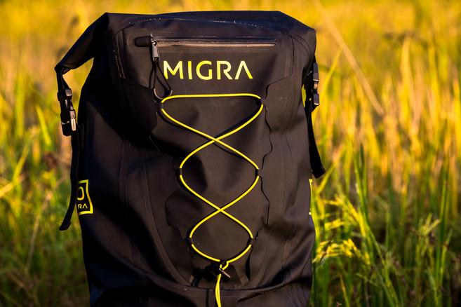 Migra Webiste-2.jpg