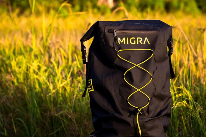 Migra Webiste-3.jpg