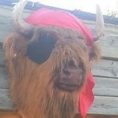 Earl Buffalo