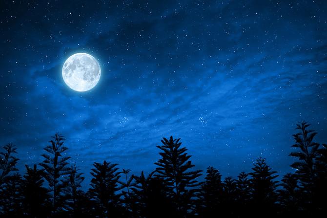The Thirteenth Moon: On Ritual