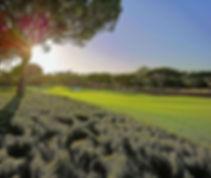 north-golf-course-quinta-do-lago-banner-