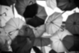 engin-akyurt-EjTL3I7ZIZE-unsplash_edited