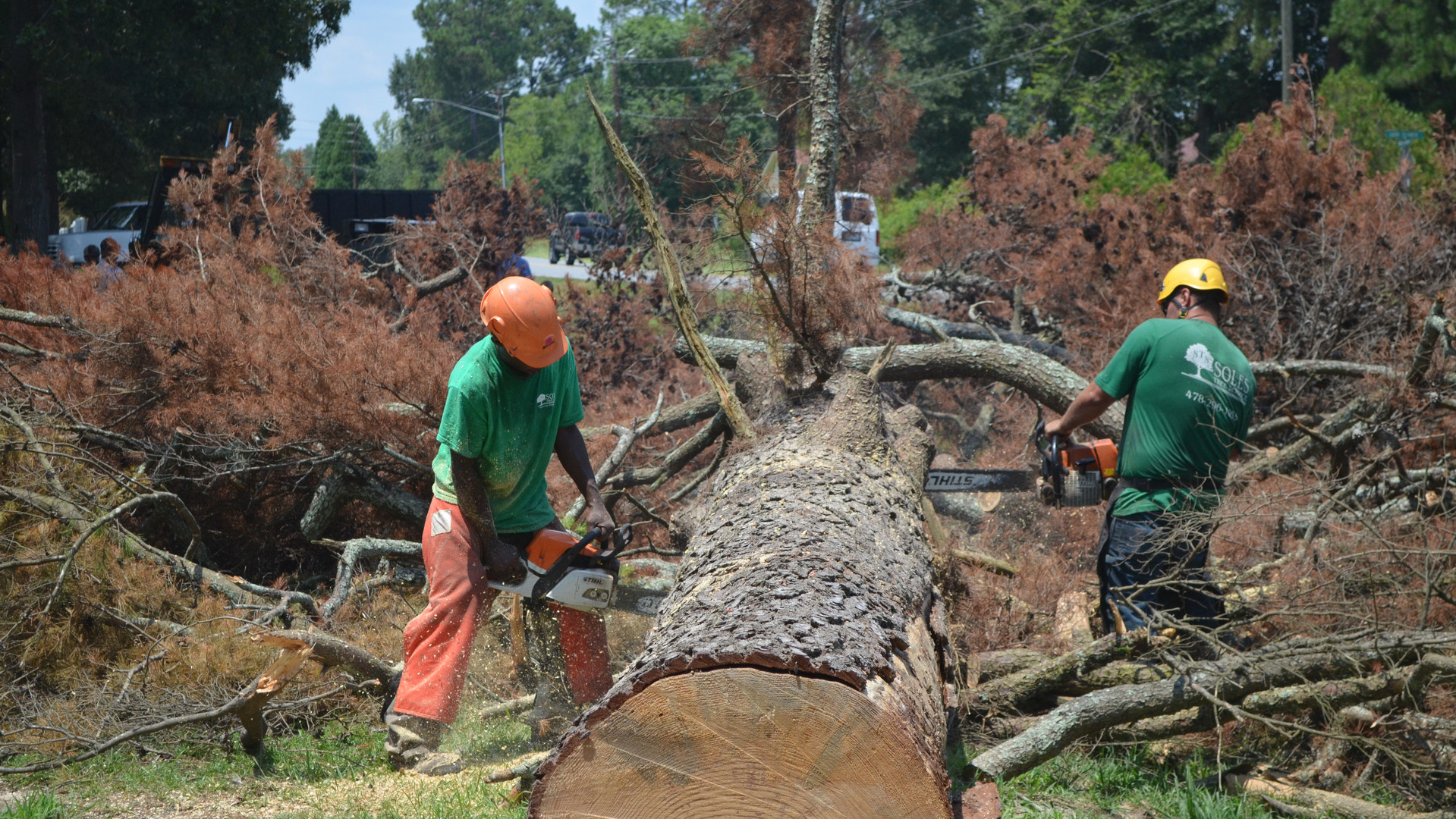 A crew works to slice up portions of the trunk from a 50-foot pine tree along Dublin's Brookhaven Drive felled when it was struck by lightning for the second time in its life.