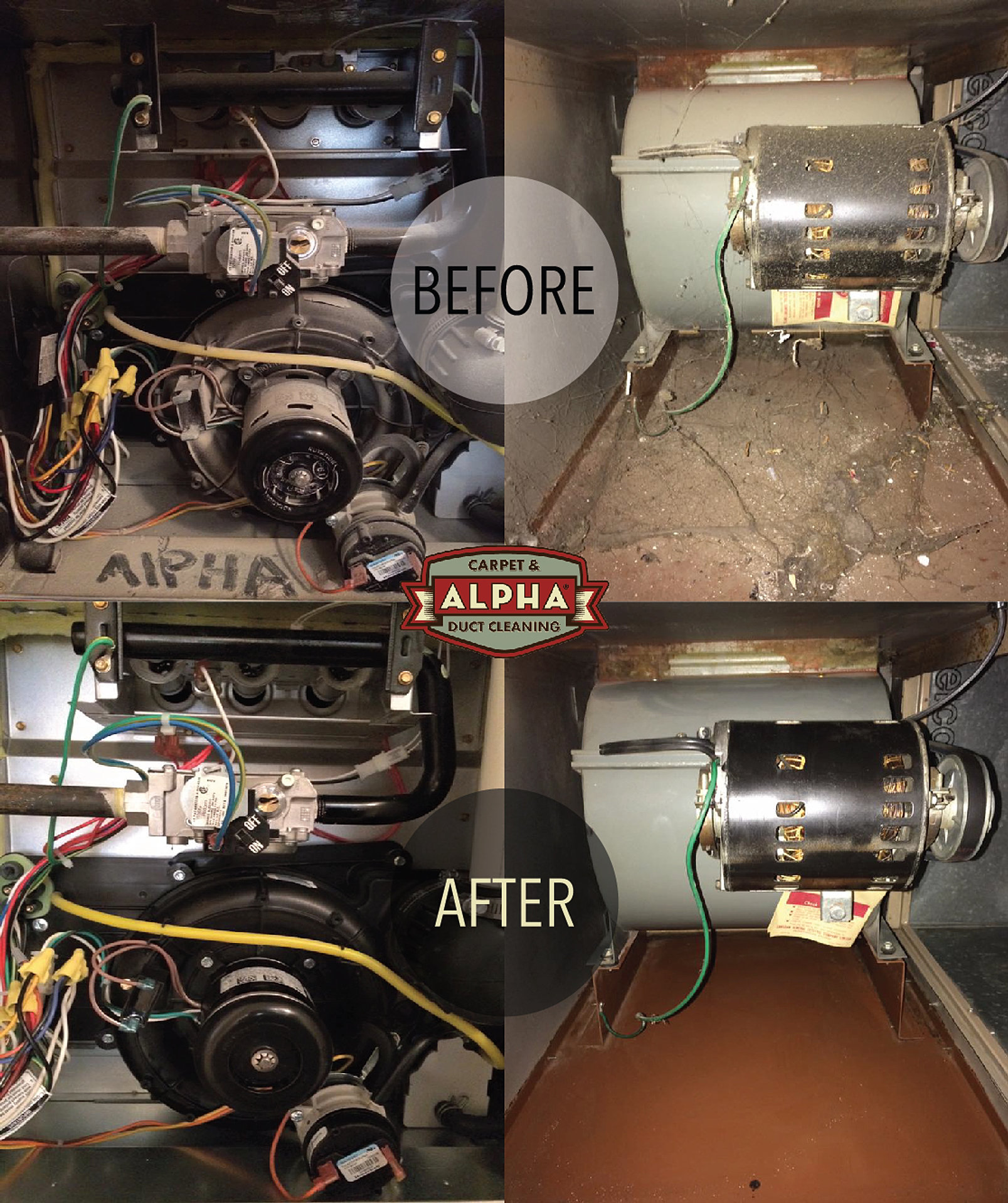 Alpha Professional Dryer Vent Cleaning Bc Lower Mainland