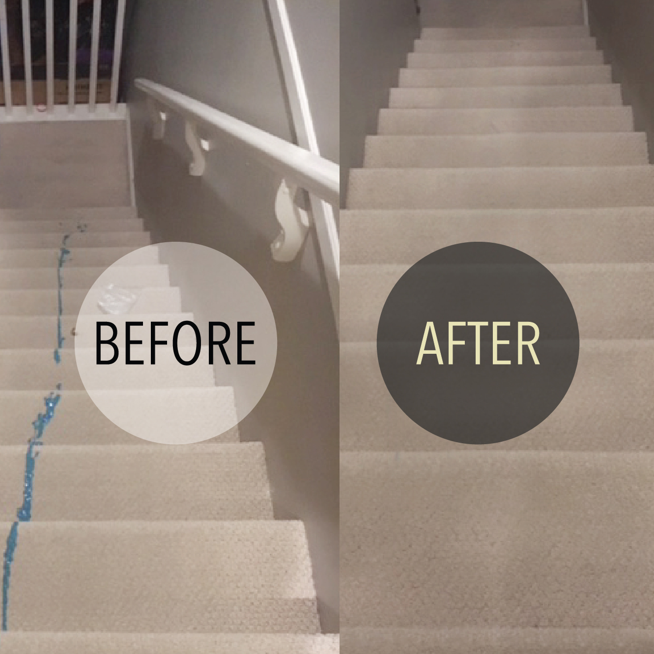 Carpet Cleaning Before & After