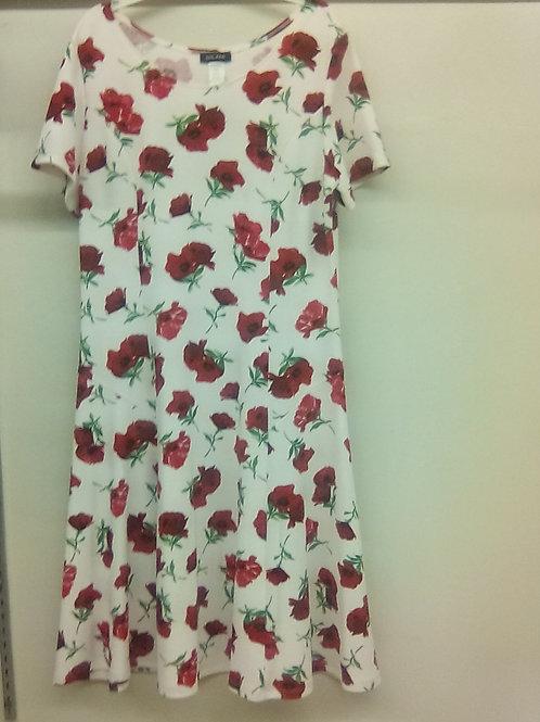 D 005 DRESS ONLY!