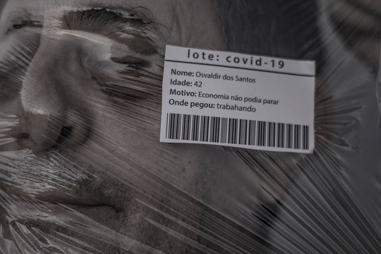 7 Lote Covid-19