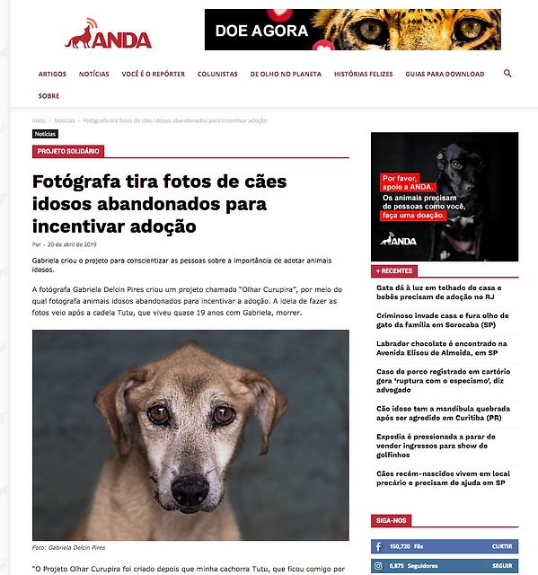 Captura_de_Tela_2020-02-03_às_16.16.08.
