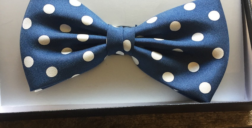 Blue & White Spotted Bow Tie