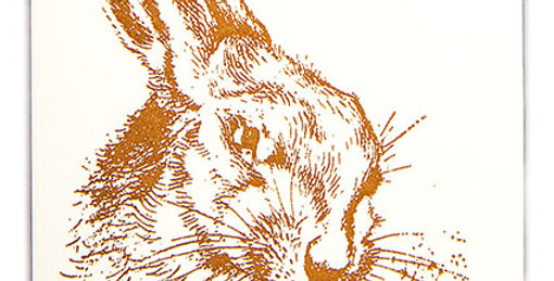 Brown Hare Note Card