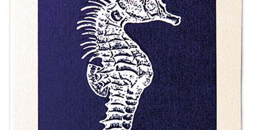 Blue Seahorse Fly Note Card