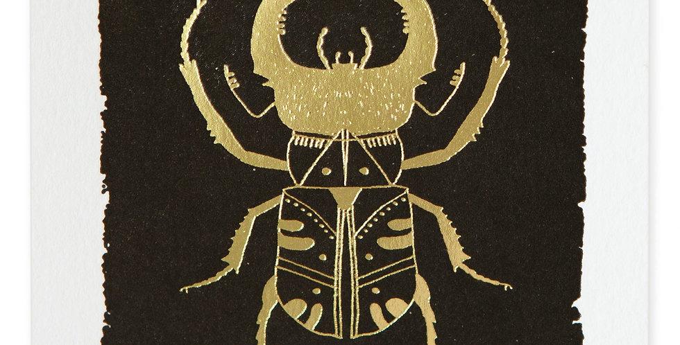 Black Beetle Note Card