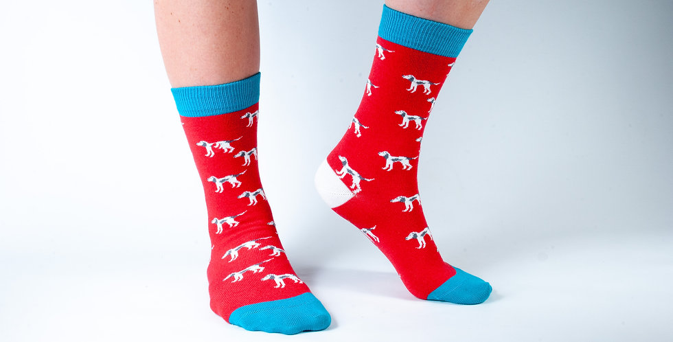 Size 3-7 Red Dog Bamboo Socks