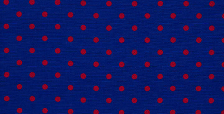 Blue With Red Spots Lounge Pants