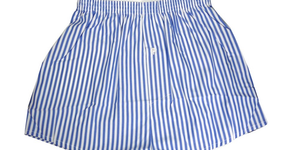 Blue Striped Boxers