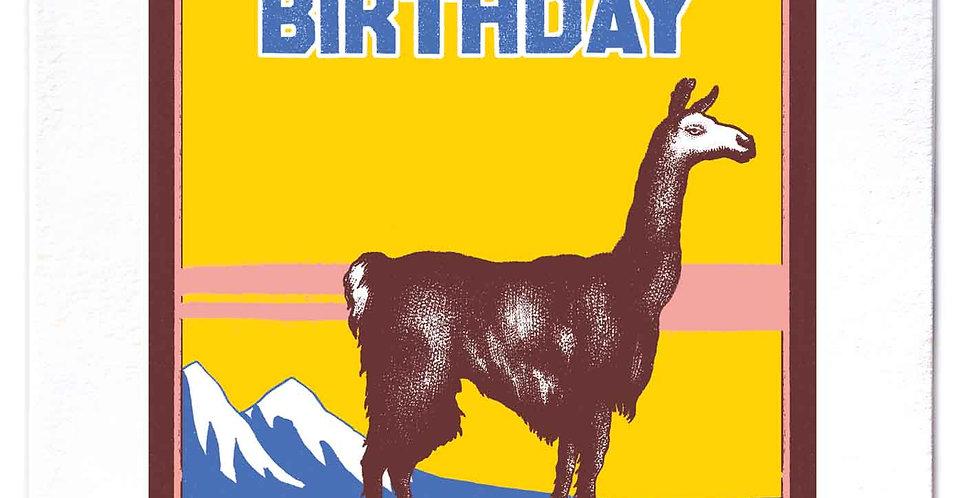 Birthday Llama Large Card