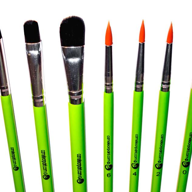 Cameleon Brushes