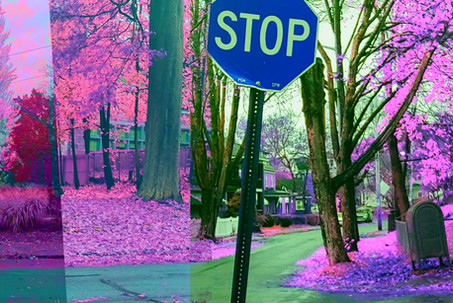 Stop + Sign