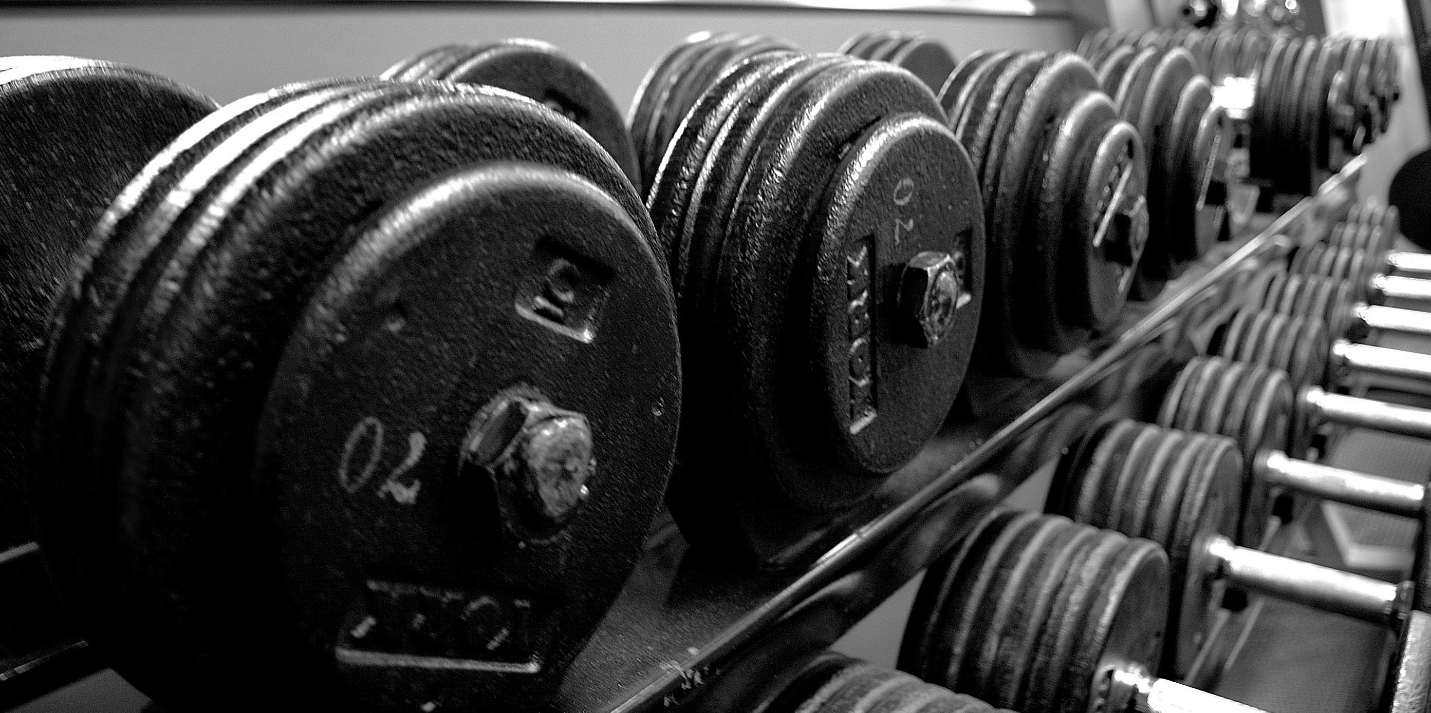 Gym pour Claude 006