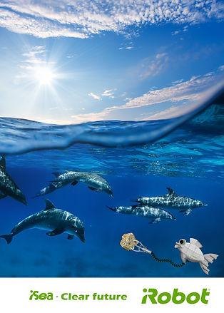דולפין.jpg