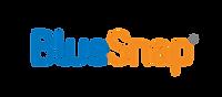 BlueSnap_Logo_FINAL_Flat_CG_Color.png
