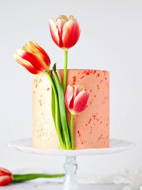 Spring Tulips/ Daffodils  cake 6'' 6-14portions