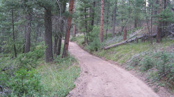 Old camp road