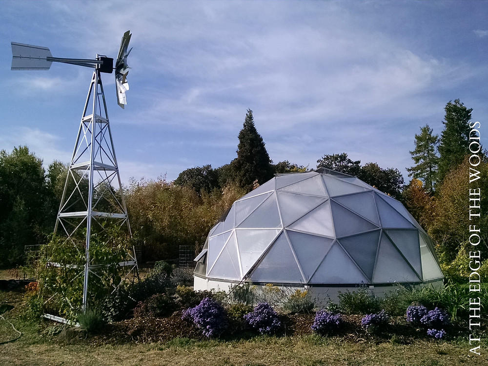 the greenhouse and windmill on the homestead