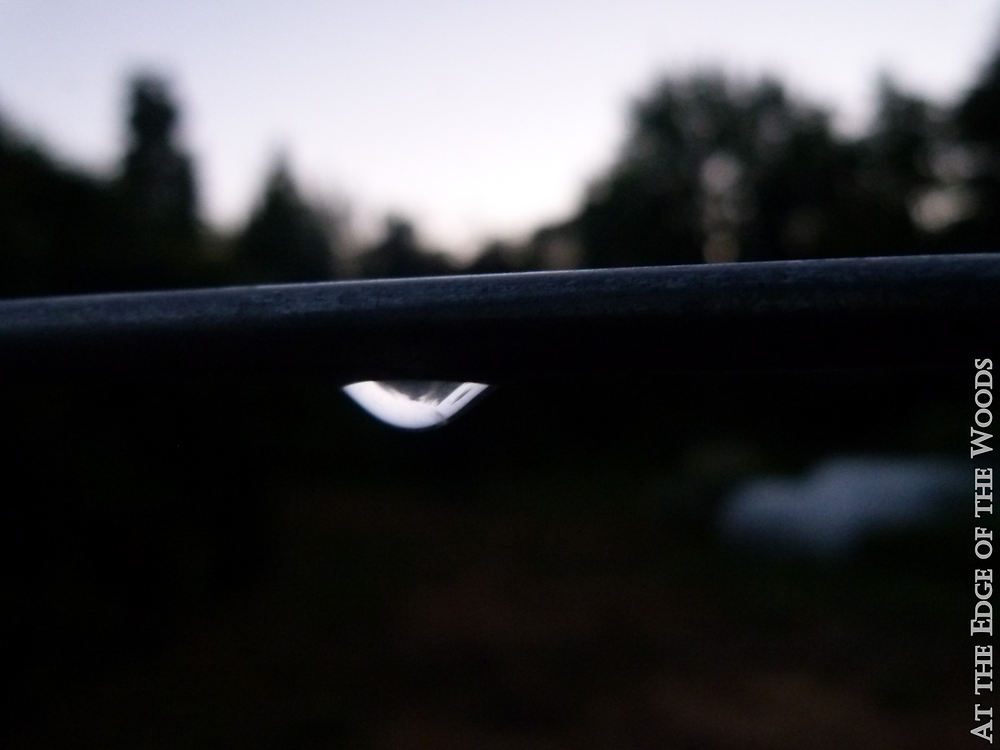 a raindrop reflects the sky