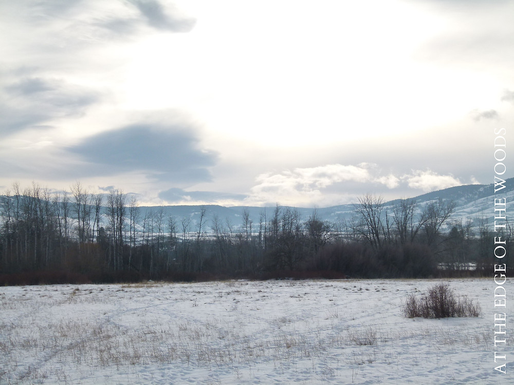 view over a snowy field to the mountains behind