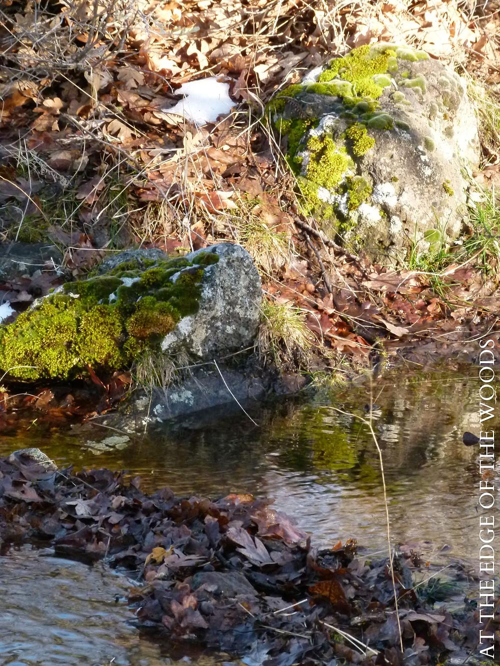 flowing water reflects light on mossy rocks