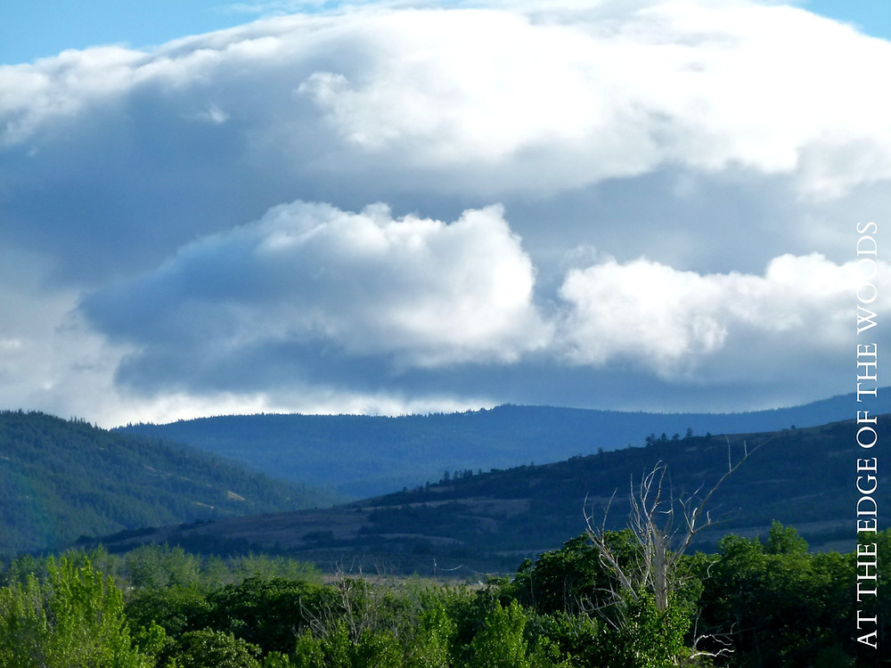 clouds gathering at the top of the valley