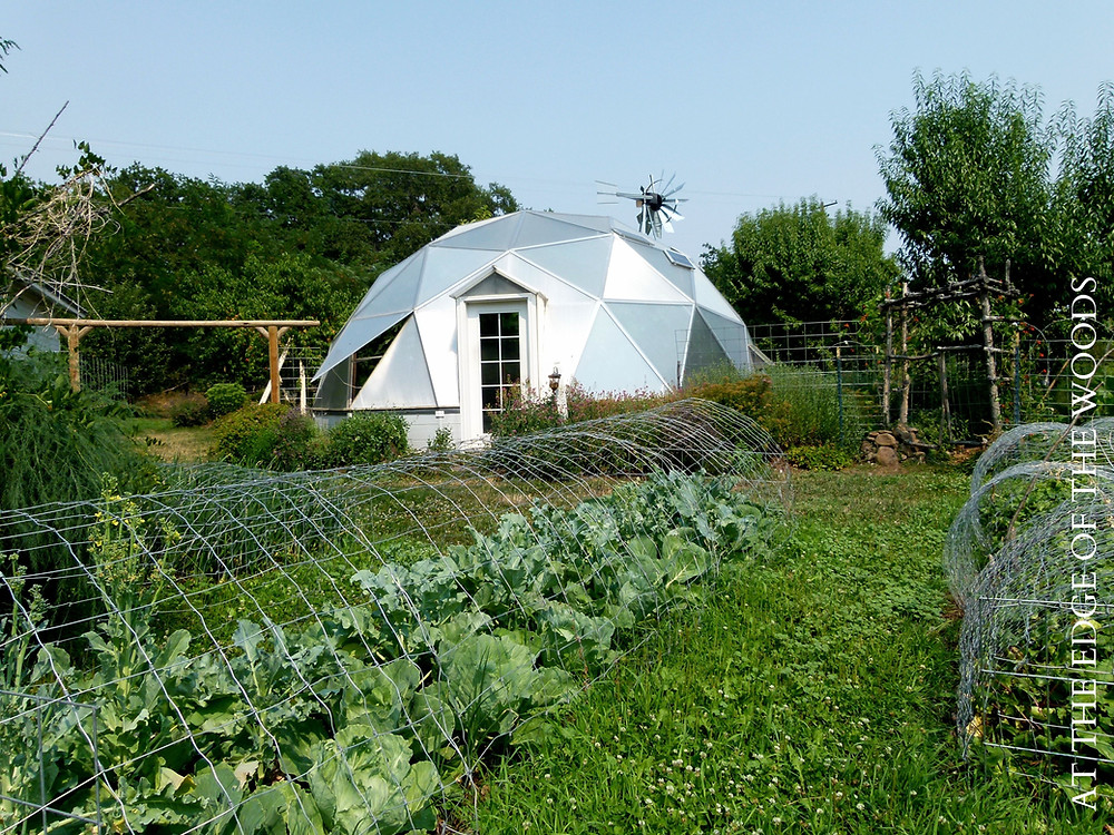 the greenhouse and gardens shine in the August sun