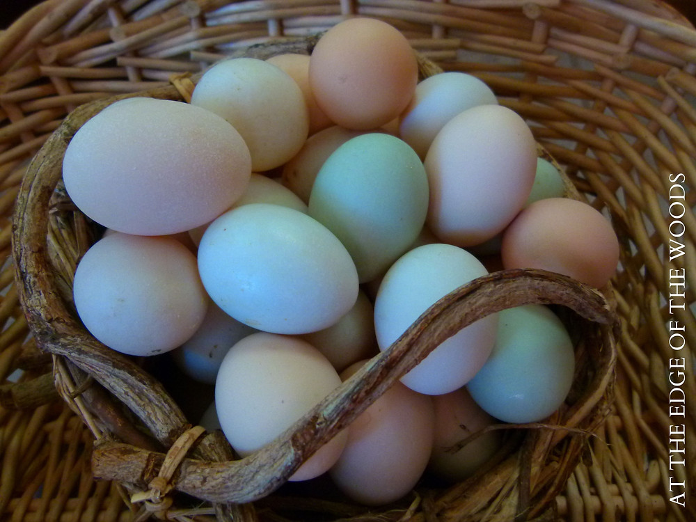 a basket of white, brown, and green eggs