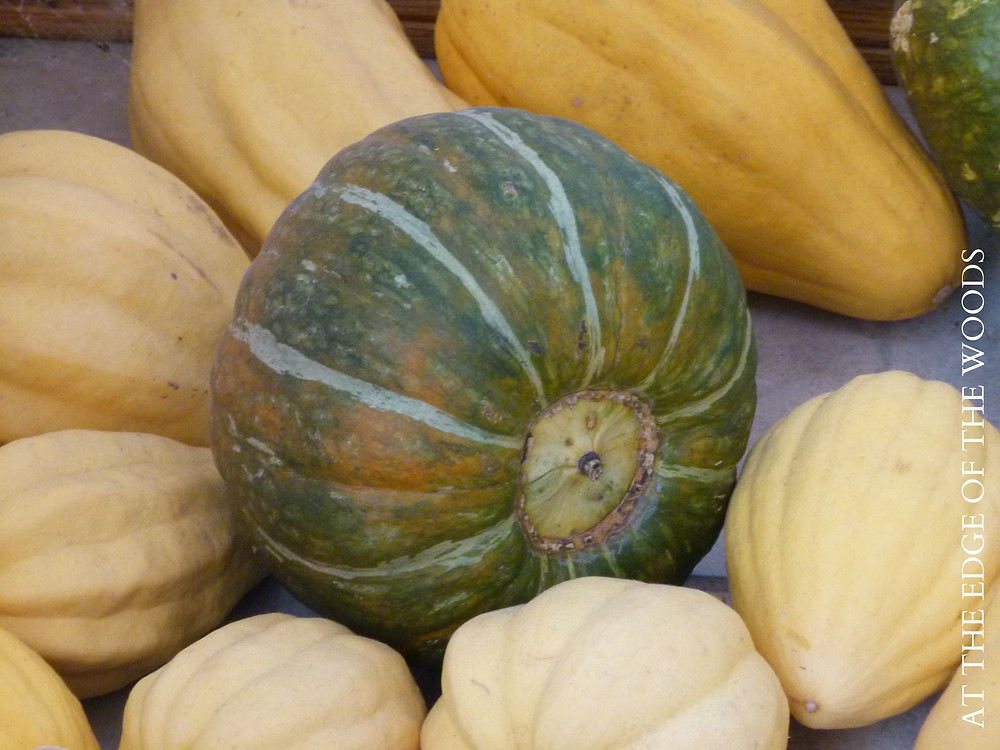 Buttercup Burgess and Thelma Sanders' squash