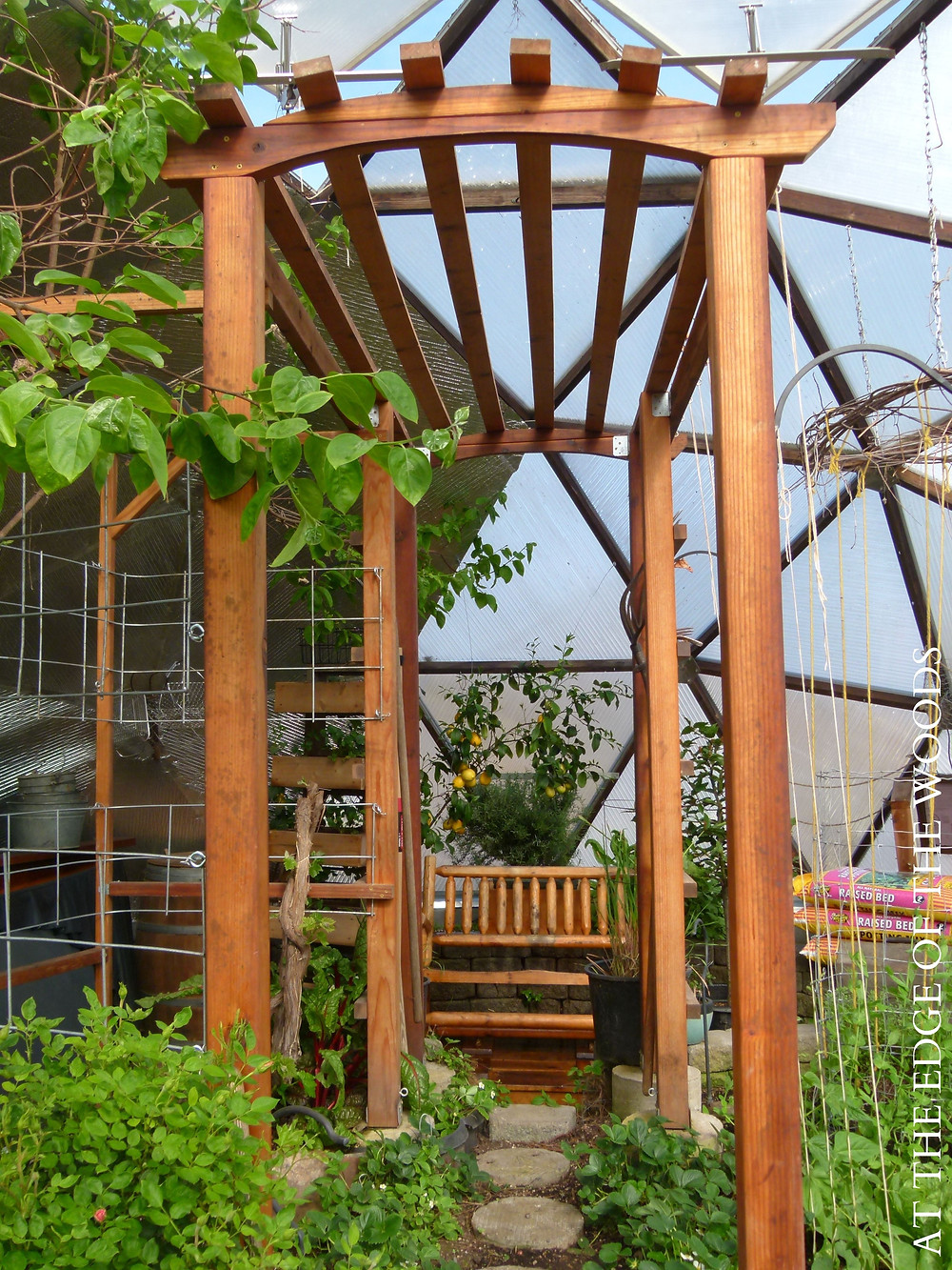a redwoods pergola in the growing dome