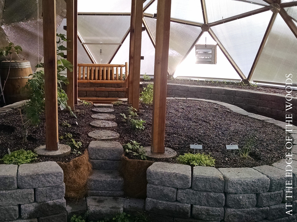 the growing beds in the greenhouse during the first season