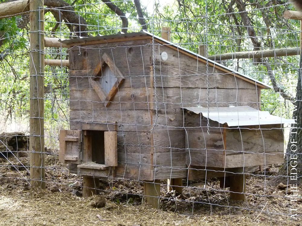 the first chicken coop