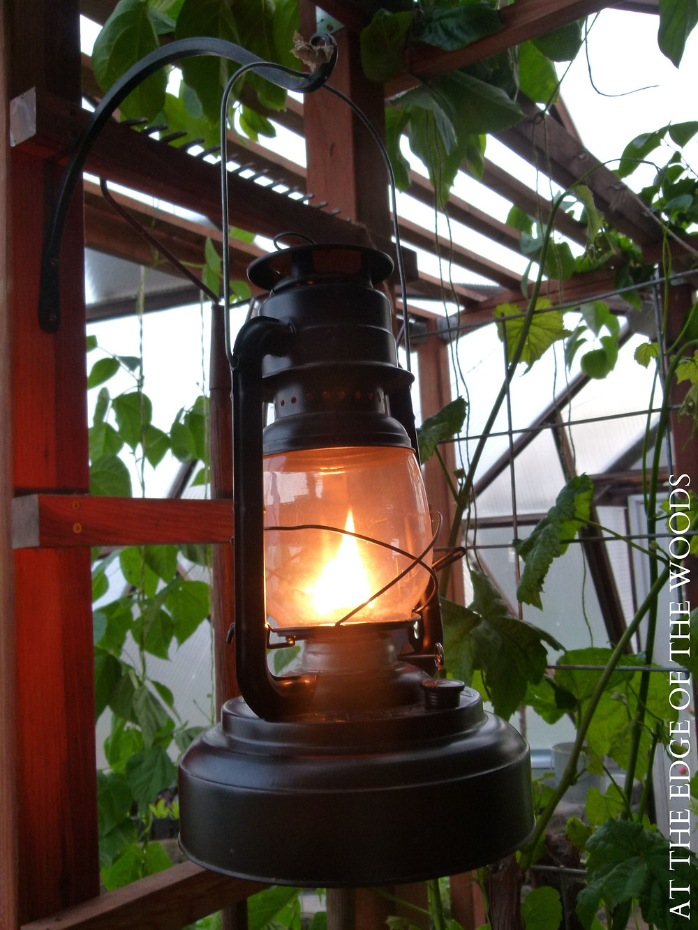 an oil lantern hanging from the pergola in the growing dome