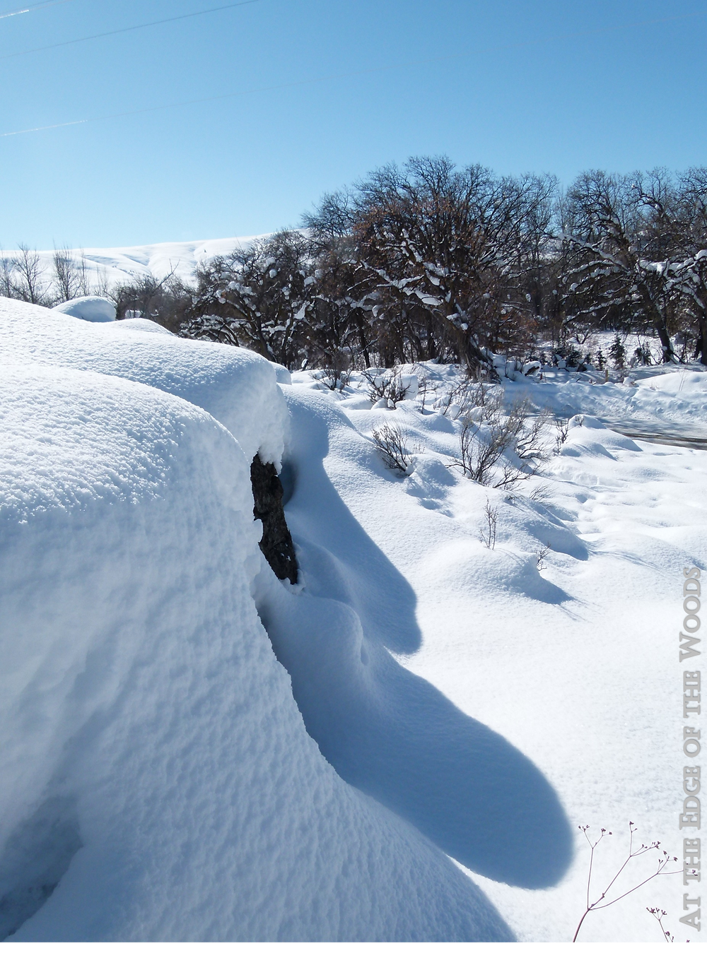 snow mounds on the bluffs