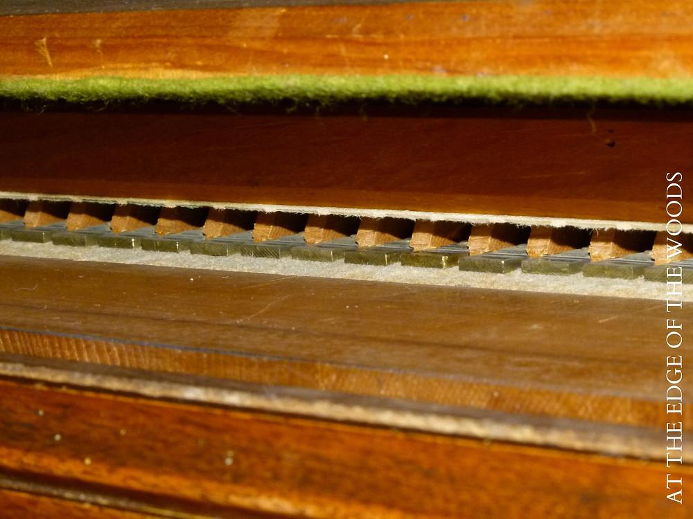 the pump organ reeds in their wooden slots