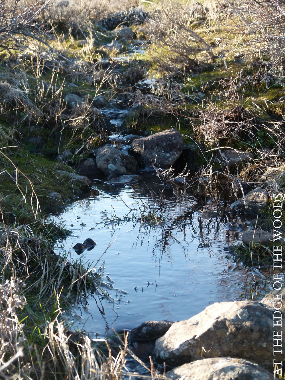 water flowing down  between basalt boulders