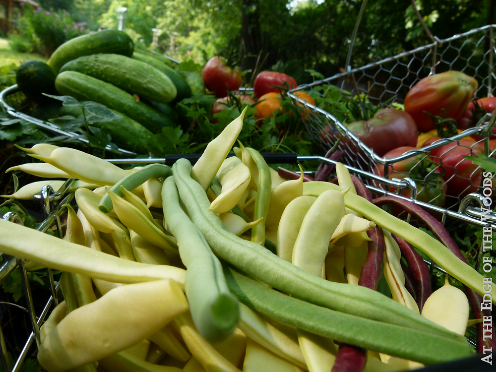 baskets of beans, cucumbers, and tomatoes