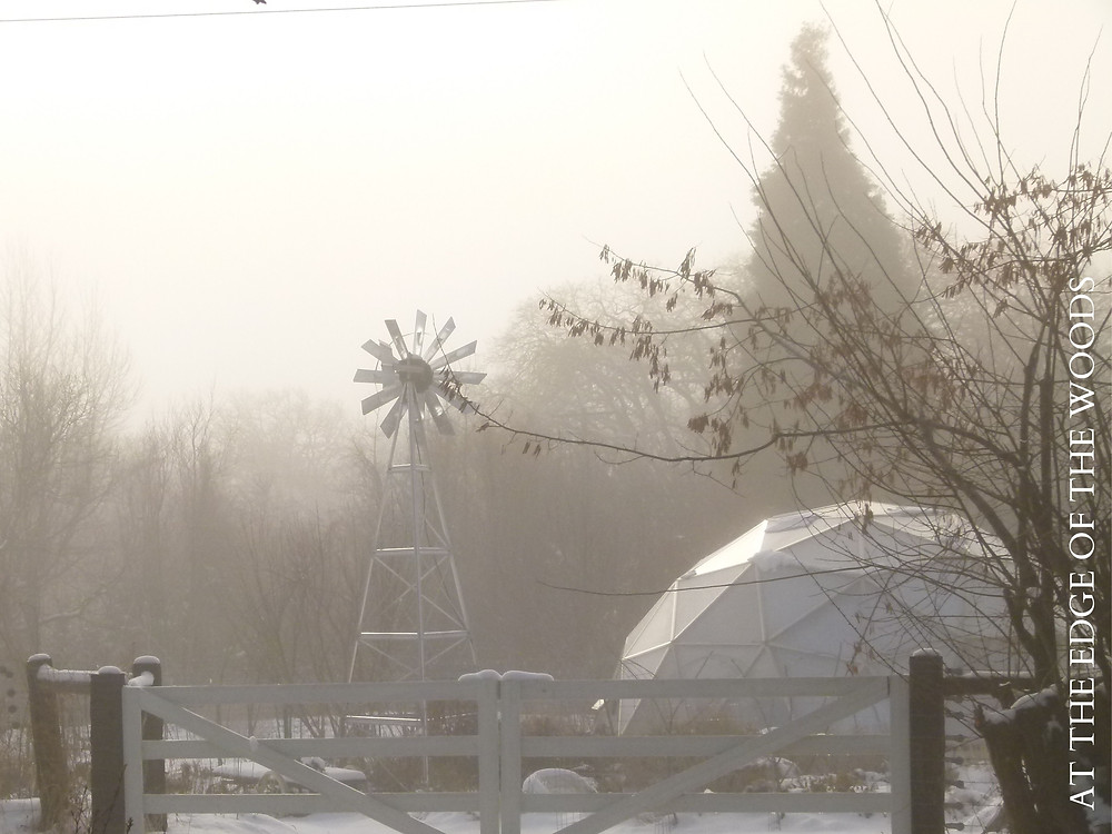 a foggy morning over the greenhouse and windmill