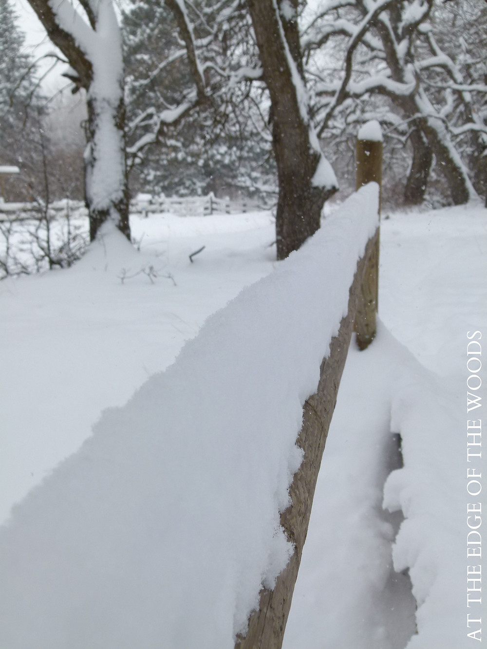 snow mounded on the fence railing